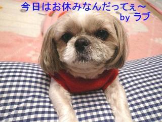 love_20071212_1