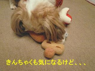 mint_20071225_13