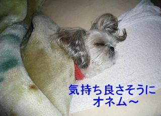 mint_20071227_1