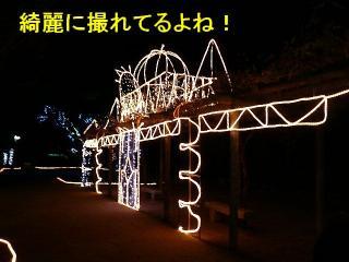 irumi_20080109_2