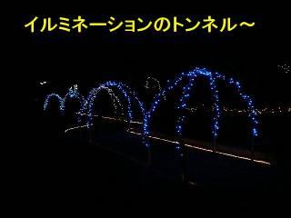 irumi_20080109_3