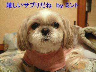 mint_20080102_14