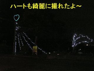 irumi_20080109_4