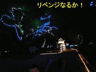 irumi_20080109_8