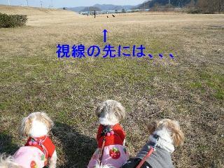 oyako_20080105_5