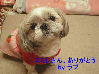 love_20080111_2