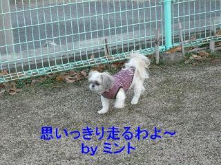 mint_20080106_1