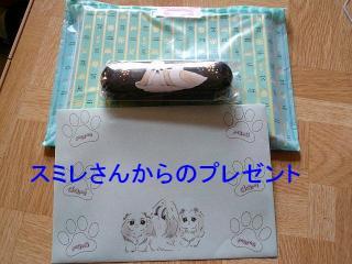 present_20080111_1