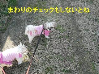 oyako_20080114_3
