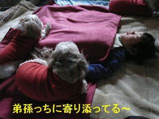 oyako_20080126_1