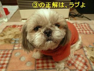 love_20080128_2