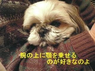 love_20080130_3