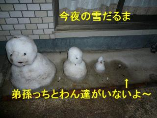 yuki_20080130_1
