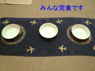 gohan_20080209_2