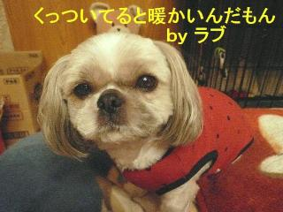 love_20080212_1