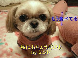 mint_20080213_1