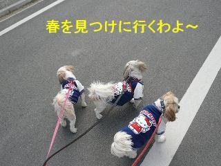 oyako_20080224_1