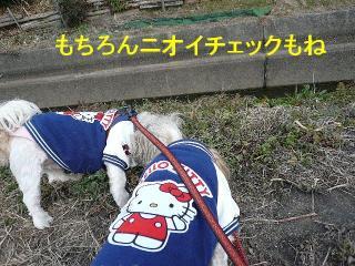 oyako_20080224_2