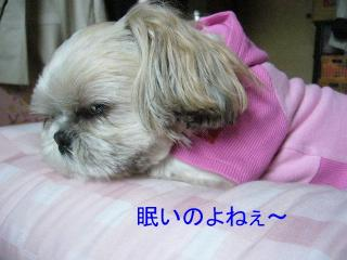 mint_20060507_1