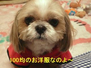 bibi_20080301_2