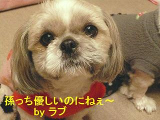 love_20080305_1