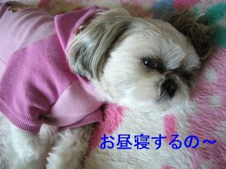 mint_20060514_1