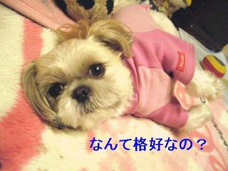 mint_20060515_2