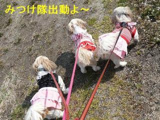 oyako_20080309_1