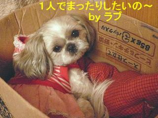 love_20080314_2