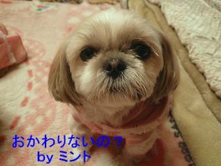 mint_20080311_3