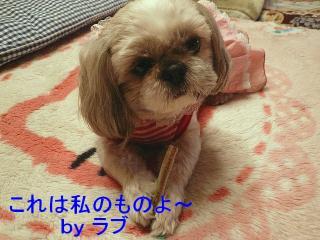 lovemint_20080311_4
