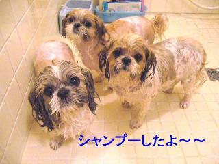 oyako_20060530_1