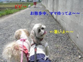 oyako_20060521_2