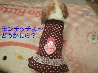 mint_20080315_1