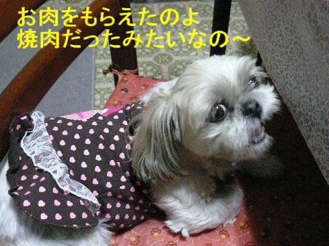 mint_20080317_3