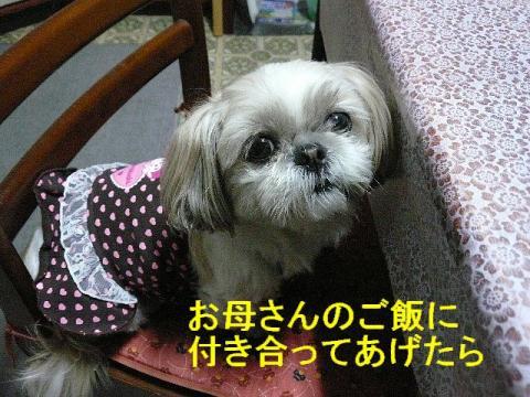 mint_20080317_2