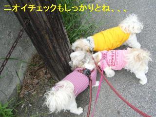 oyako_20060528_1