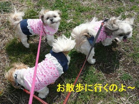 oyako_20080320_1