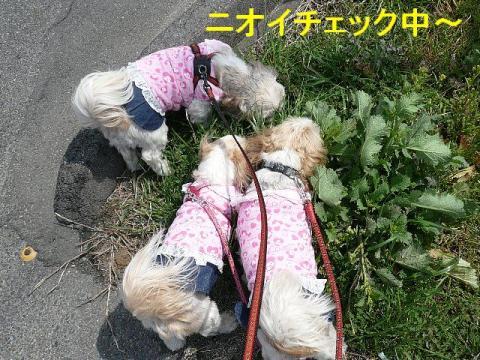 oyako_20080320_2