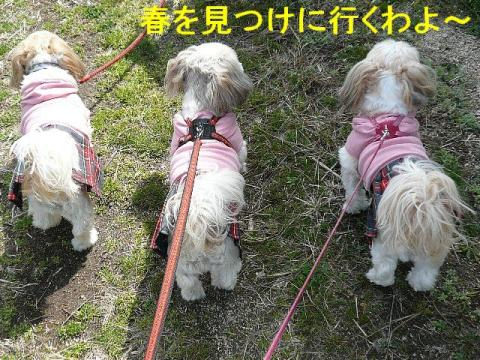 oyako_20080322_1