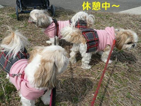 oyako_20080322_2