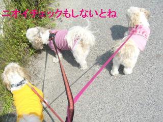 oyako_20060531_2