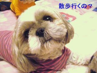 love_20060601_2