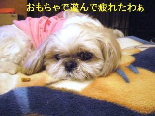 mint_20060602_5