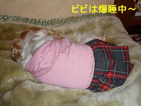 bibi_20080323_1