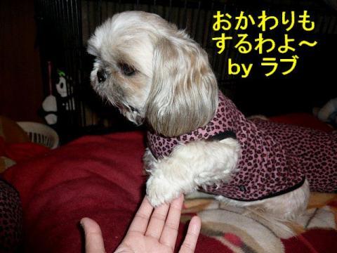 love_20080325_3