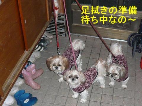 oyako_20080327_1
