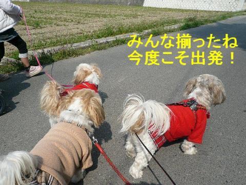 oyako_20080329_1