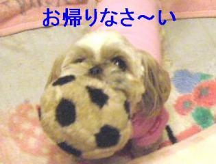lovet_20060609_1