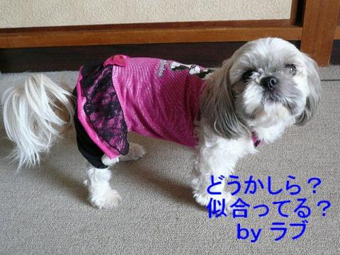 love_20080405_1